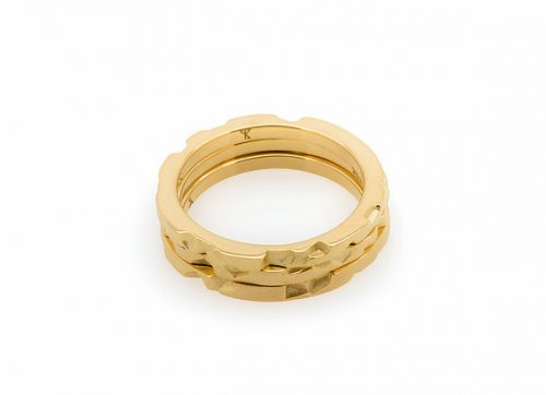 Tern x Gold parametric rings