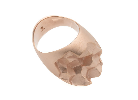 ROOK x ROSE ring side view