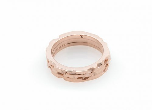 Tern x Rose ring isolated
