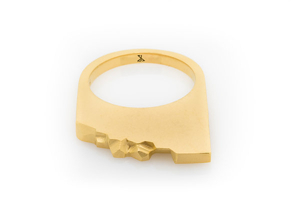 SHALE x GOLD designer ring